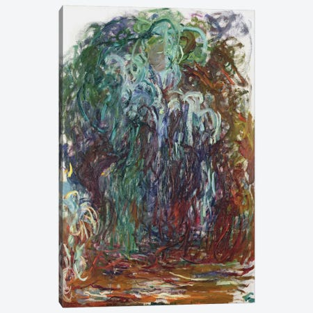Weeping Willow, 1921-22  Canvas Print #BMN2529} by Claude Monet Art Print