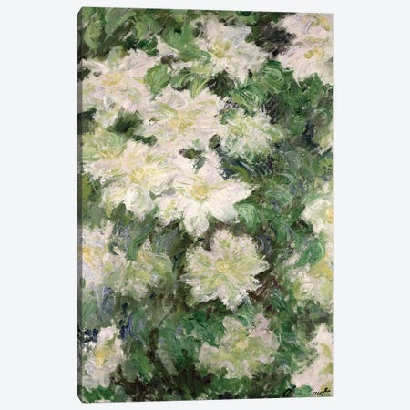 White Clematis, 1887  Canvas Print #BMN2531} by Claude Monet Canvas Artwork
