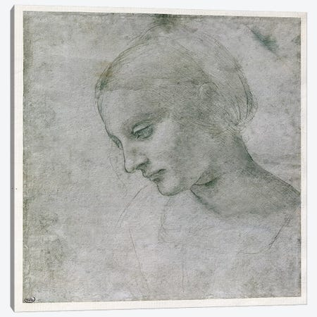 Head of a Young Woman or Head of the Virgin, c.1490  Canvas Print #BMN2538} by Leonardo da Vinci Canvas Wall Art