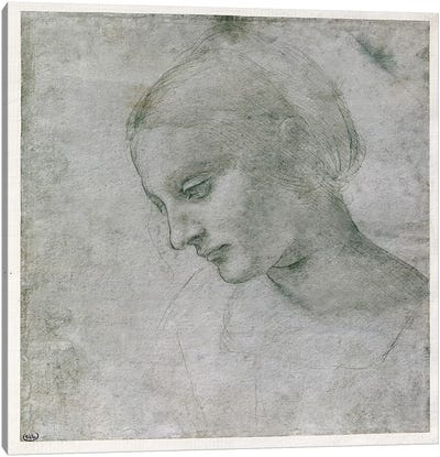 Head of a Young Woman or Head of the Virgin, c.1490 Canvas Art Print