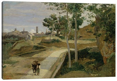 Road from Volterra  Canvas Art Print