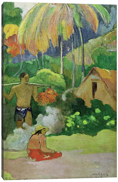 Landscape in Tahiti  Canvas Art Print