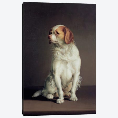 Portrait of a King Charles Spaniel Canvas Print #BMN257} by Louis Leopold Boilly Canvas Art