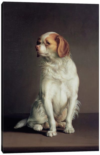 Portrait of a King Charles Spaniel Canvas Art Print