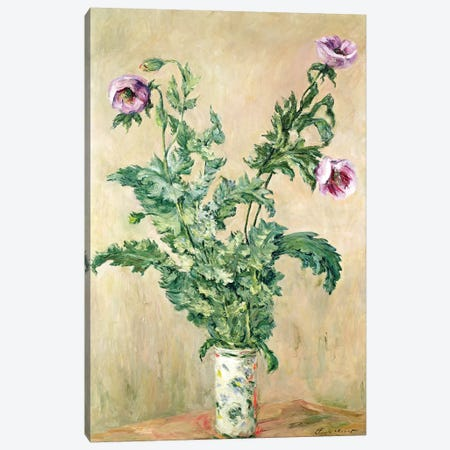 Poppies, c.1882  Canvas Print #BMN2584} by Claude Monet Canvas Wall Art