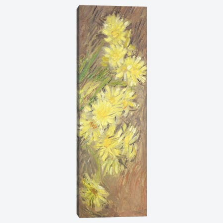 Marguerites Jaunes, 1883-84  Canvas Print #BMN2585} by Claude Monet Canvas Wall Art