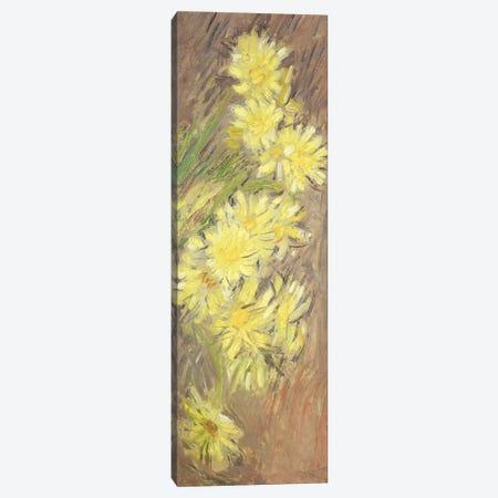 Marguerites Jaunes, 1883-84  Canvas Print #BMN2585} by Claude Monet Canvas Wall Art