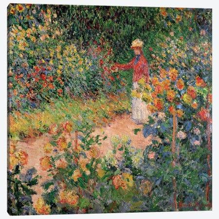 Garden at Giverny, 1895  Canvas Print #BMN2607} by Claude Monet Art Print