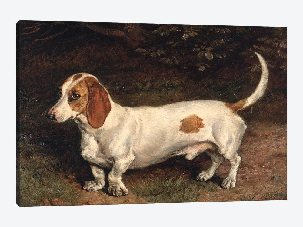 A Favourite Dachshund  by Frank Paton 1-piece Canvas Wall Art
