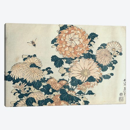 Chrysanthemums  Canvas Print #BMN2639} by Katsushika Hokusai Canvas Art Print