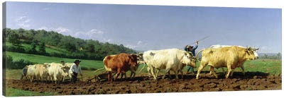 Ploughing In Nivernais, 1849 (Musee d'Orsay) Canvas Art Print