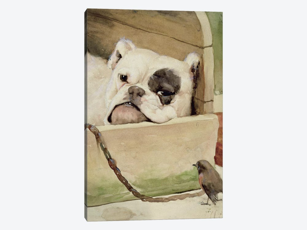 Bulldog, 1927  by Cecil Charles Windsor Aldin 1-piece Canvas Art Print
