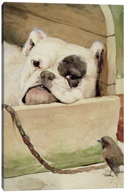 Bulldog, 1927  Canvas Art Print