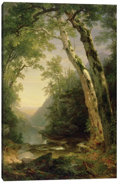 The Catskills, 1859  Canvas Art Print