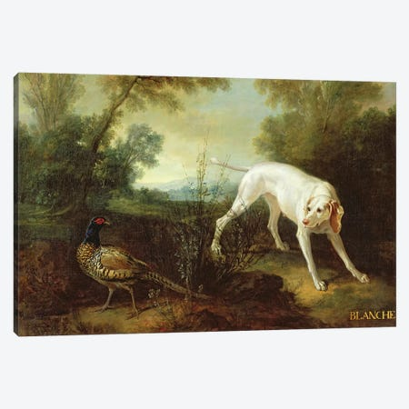 Blanche, Bitch of the Royal Hunting Pack  Canvas Print #BMN2684} by Jean-Baptiste Oudry Art Print