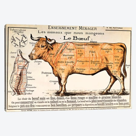 Beef: diagram depicting the different cuts of meat  Canvas Print #BMN2716} by French School Art Print