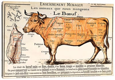 Beef: diagram depicting the different cuts of meat  Canvas Art Print