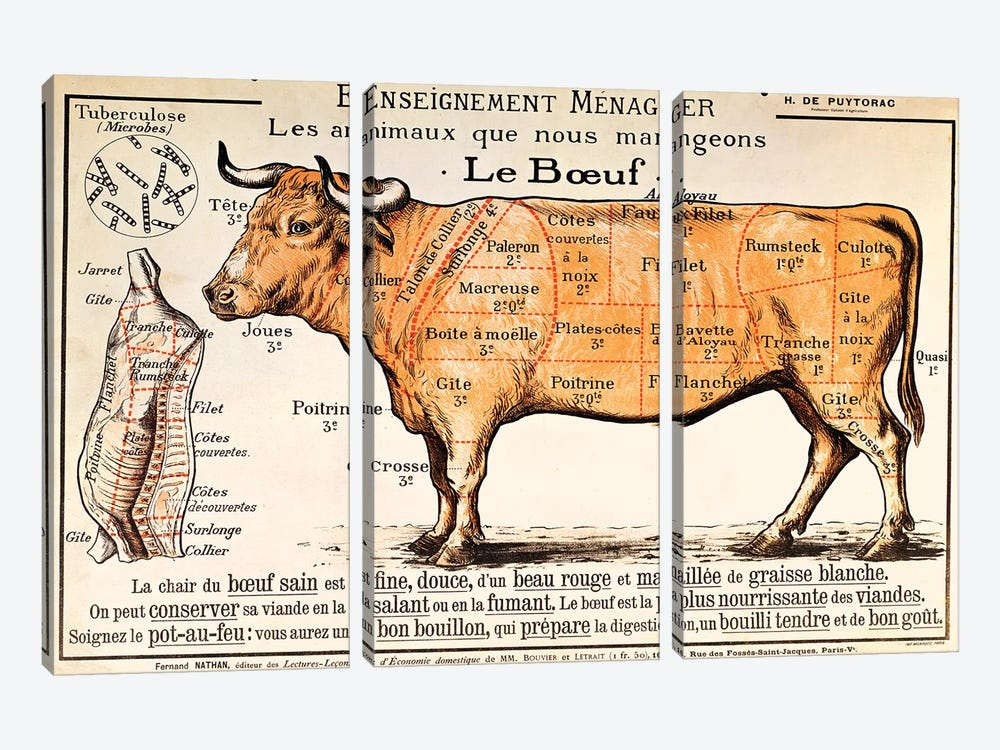 Beef: diagram depicting the different cuts of meat  by French School 3-piece Canvas Art Print
