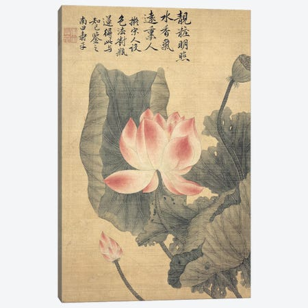 Peonies  Canvas Print #BMN2719} by Yun Shouping Canvas Wall Art