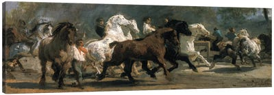 Study For The Horsemarket, 1852-54 Canvas Art Print
