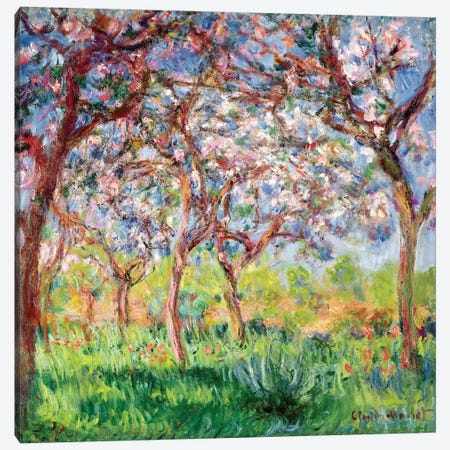 Printemps a Giverny, 1903  Canvas Print #BMN2756} by Claude Monet Art Print