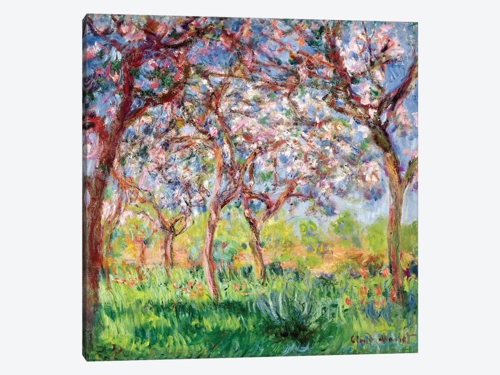 Printemps a Giverny, 1903  by Claude Monet 1-piece Canvas Art Print