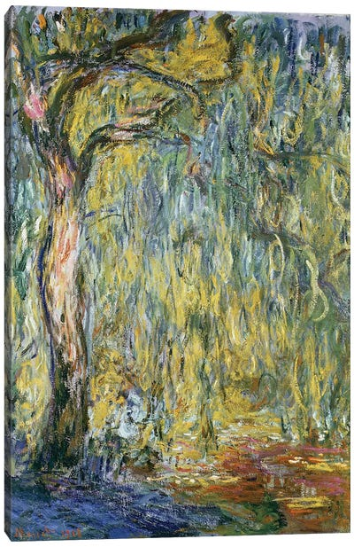 The Large Willow at Giverny, 1918  Canvas Art Print