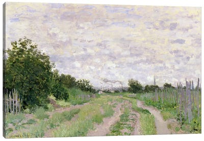 Path through the Vines, Argenteuil, 1872  Canvas Print #BMN2840