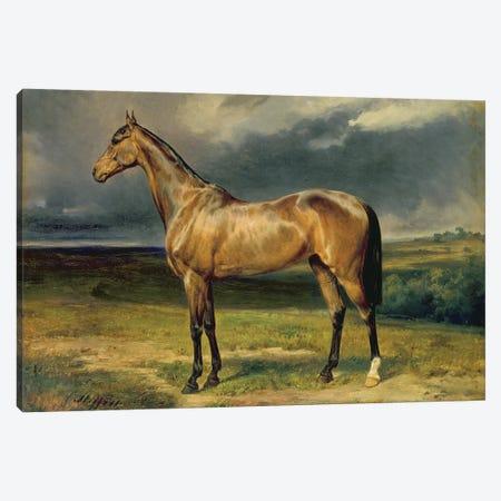 Abdul Medschid' the chestnut arab horse, 1855  Canvas Print #BMN2855} by Carl Constantin Steffeck Canvas Art