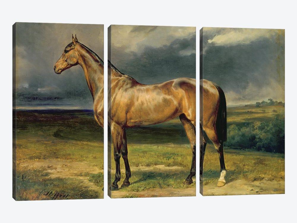Abdul Medschid' the chestnut arab horse, 1855  by Carl Constantin Steffeck 3-piece Canvas Art