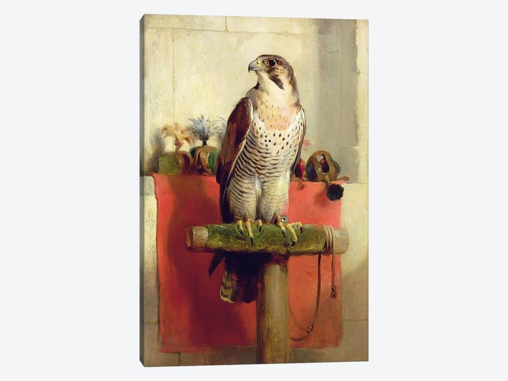 Falcon, 1837  by Sir Edwin Landseer 1-piece Art Print