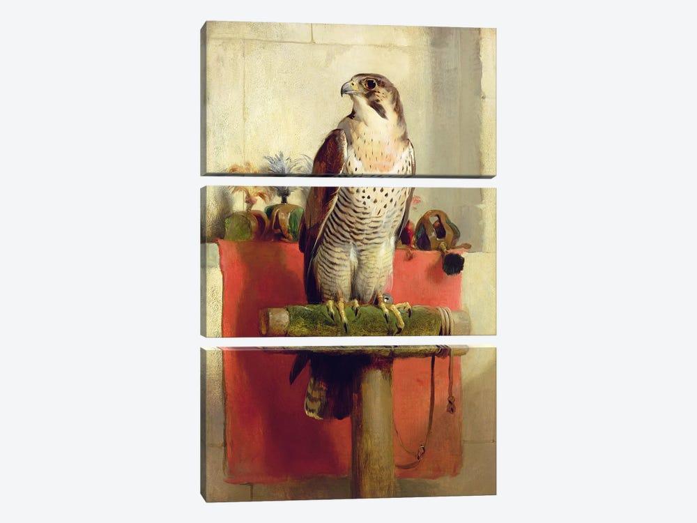 Falcon, 1837  by Sir Edwin Landseer 3-piece Art Print