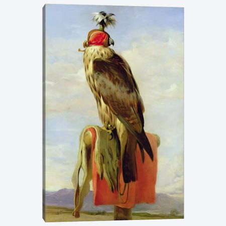 Hooded Falcon  Canvas Print #BMN2859} by Sir Edwin Landseer Canvas Print