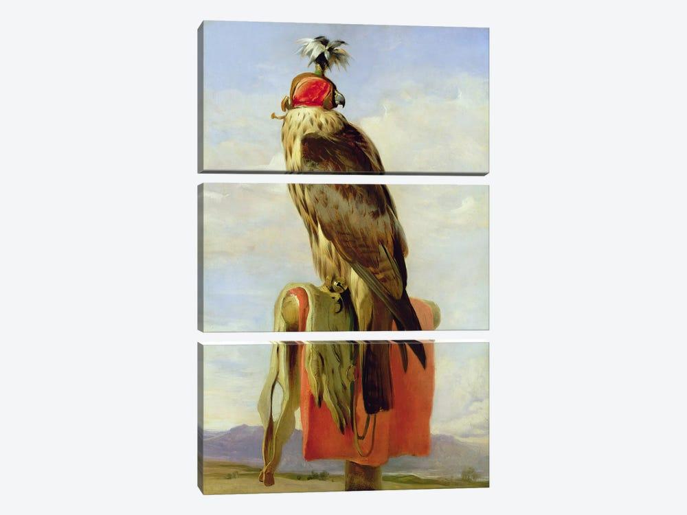 Hooded Falcon  by Sir Edwin Landseer 3-piece Canvas Wall Art