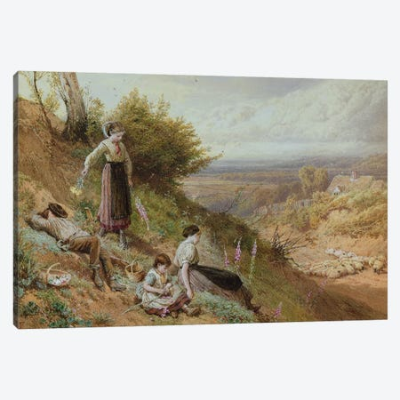 The Hillside  Canvas Print #BMN286} by Myles Birket Foster Art Print