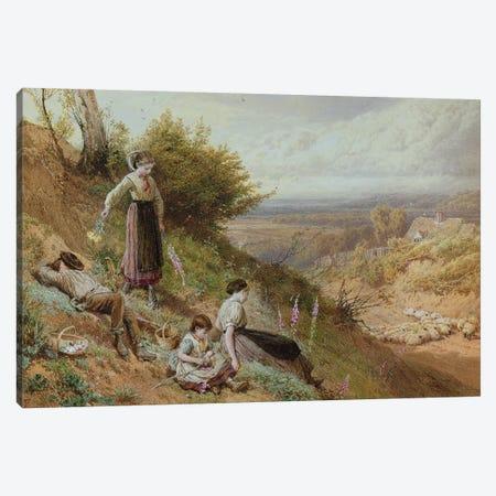The Hillside  Canvas Print #BMN286} by Myles Birket Foster Art Print