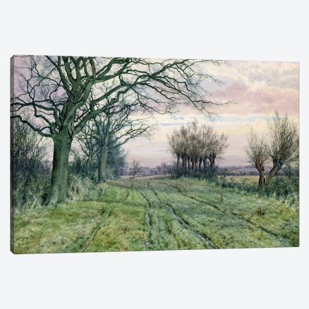 A Fenland Lane with Pollarded Willows, 1887  Canvas Print #BMN2870} by William Fraser Garden Canvas Art Print