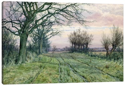 A Fenland Lane with Pollarded Willows, 1887  Canvas Art Print
