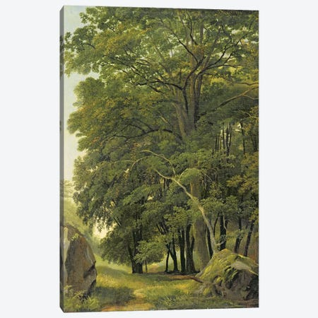 A Wooded Landscape  Canvas Print #BMN2871} by Ramsay Richard Reinagle Art Print