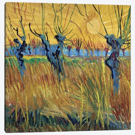 Pollarded Willows and Setting Sun, 1888  Canvas Print #BMN290} by Vincent van Gogh Art Print