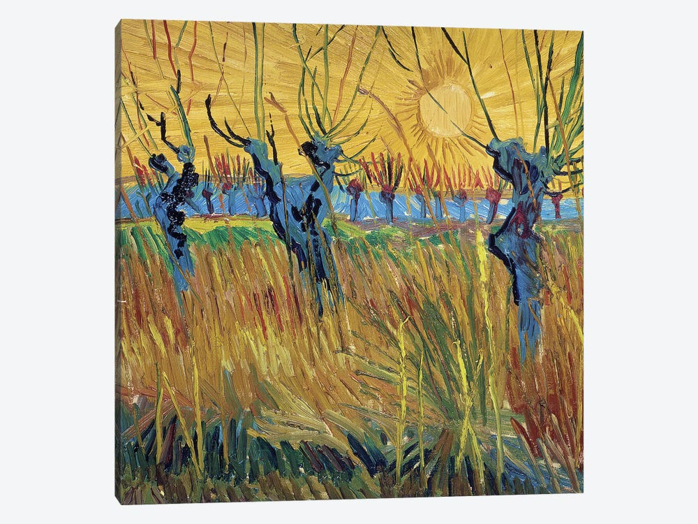 Pollarded Willows and Setting Sun, 1888  by Vincent van Gogh 1-piece Canvas Art Print