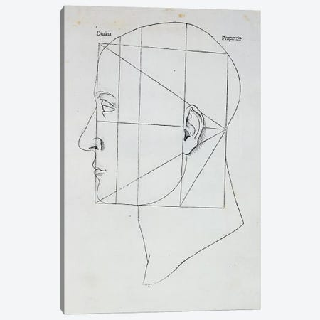 The Human Head Canvas Print #BMN2917} by Leonardo da Vinci Canvas Print