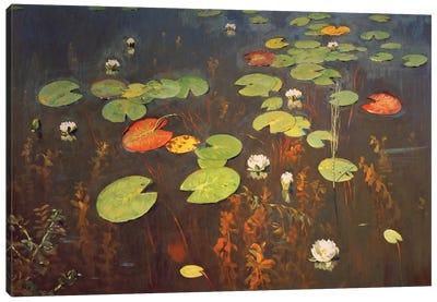 Water Lilies 1895  Canvas Art Print