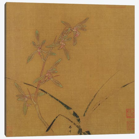 Orchids  Canvas Print #BMN2938} by Japanese School Canvas Artwork