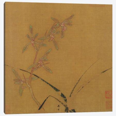 Orchids  Canvas Print #BMN2938} by Japanese School Canvas Artwork