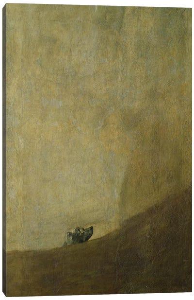 The Dog, 1820-23  Canvas Art Print