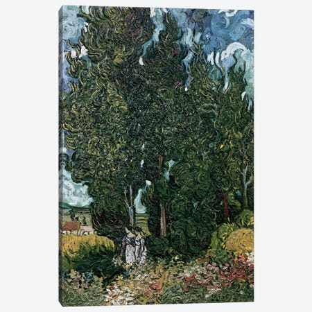 The cypresses, c.1889-90  Canvas Print #BMN3015} by Vincent van Gogh Canvas Print