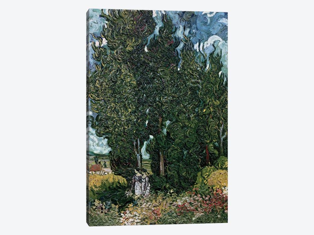 The cypresses, c.1889-90  by Vincent van Gogh 1-piece Art Print