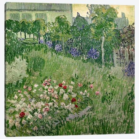 Daubigny's garden, 1890  Canvas Print #BMN3019} by Vincent van Gogh Canvas Art