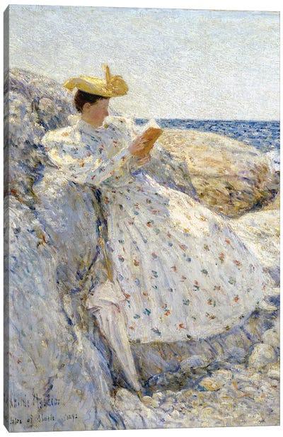 Summer Sunlight, Isles of Shoals, 1892  Canvas Art Print